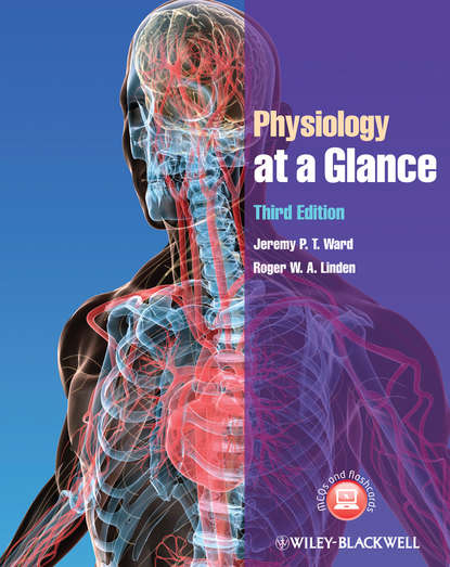 Linden Roger W.A. Physiology at a Glance gary matthews g cellular physiology of nerve and muscle