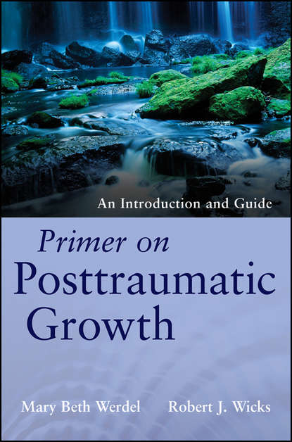 Wicks Robert J. Primer on Posttraumatic Growth. An Introduction and Guide richard barras building cycles growth and instability