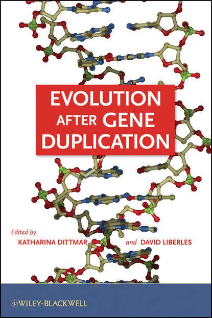 цена на Dittmar Katharina Evolution after Gene Duplication