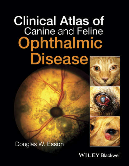 Douglas W. Esson Clinical Atlas of Canine and Feline Ophthalmic Disease lynelle r johnson clinical canine and feline respiratory medicine
