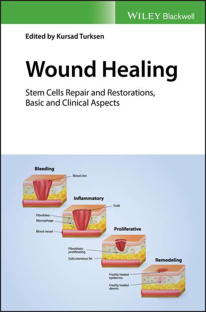 Группа авторов Wound Healing