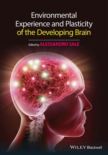 Alessandro Sale Environmental Experience and Plasticity of the Developing Brain cognitive effects of early brain injury