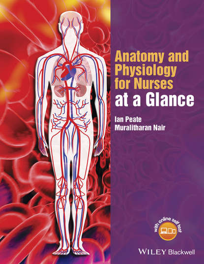 Ian Peate Anatomy and Physiology for Nurses at a Glance colin rees nursing and healthcare research at a glance