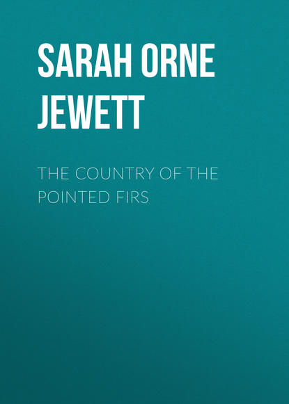 Sarah Orne Jewett The Country of the Pointed Firs sarah orne jewett strangers and wayfarers