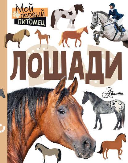 Лошади : Сергеева Ксения
