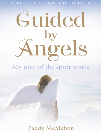 Paddy McMahon Guided By Angels: There Are No Goodbyes, My Tour of the Spirit World there is life after college