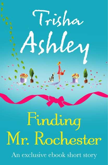Trisha Ashley Finding Mr Rochester trisha david mctavish and twins