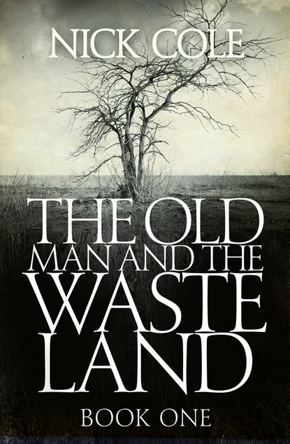 Nick Cole The Old Man and the Wasteland ruth ann lambe the man of the cloth