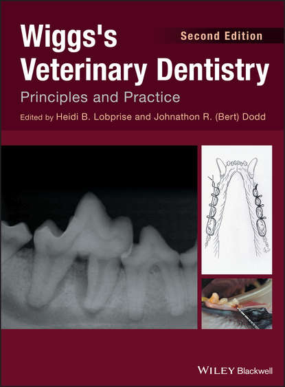 Heidi B. Lobprise Wiggs's Veterinary Dentistry. Principles and Practice the importance of teamwork in dentistry