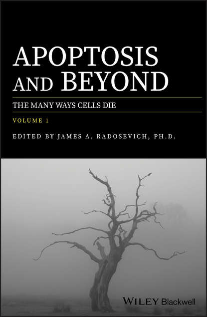 James Radosevich A. Apoptosis and Beyond. The Many Ways Cells Die vaux david cell death isbn 9780470686577