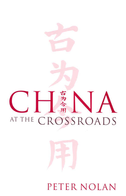 Группа авторов China at the Crossroads sara bongiorni a year without made in china one family s true life adventure in the global economy