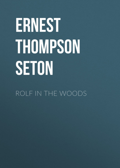 Фото - Ernest Thompson Seton Rolf in the Woods ernest alfred thompson wallis budge ancient egyptian literature