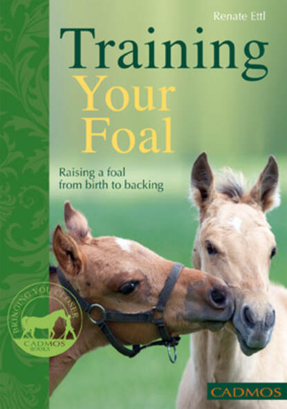 Renate Ettl Training Your Foal renate yates assassinations the collected stories of renate yates