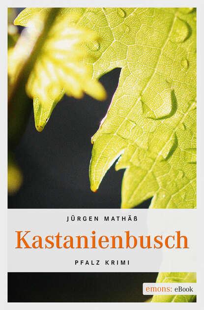 Jürgen Mathäß Kastanienbusch jürgen kumlehn rock