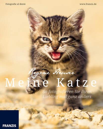 Regine Heuser Meine Katze