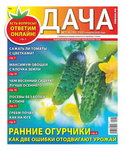 Дача Pressa.ru 07-08-2020
