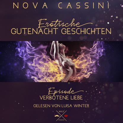 Nova Cassini Verbotene Liebe - Erotische Gutenacht Geschichten, Band 5 (ungekürzt) виталий мушкин erotische geschichten top ten