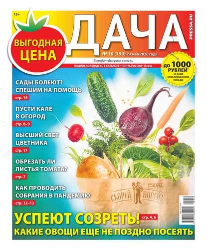 Дача Pressa.ru 10-2020