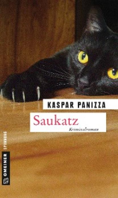 Kaspar Panizza Saukatz benedikt weber ein fall für die schwarze pfote piraten