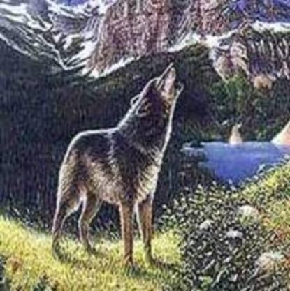 Лев Толстой Волк николай ободников мальчик который любил грызть кости
