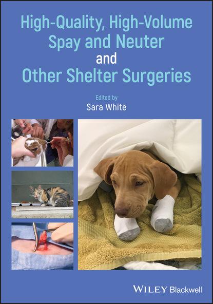 Группа авторов High-Quality, High-Volume Spay and Neuter and Other Shelter Surgeries недорого