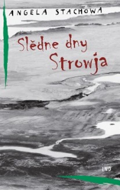 leo tolstoi briefe einblick in die gedanken tolstois Stachowa Angela Slědne dny Strowja