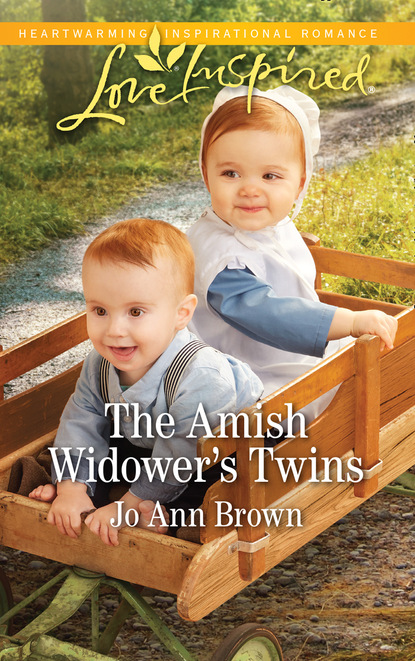 Jo Ann Brown The Amish Widower's Twins carole halston because of the twins