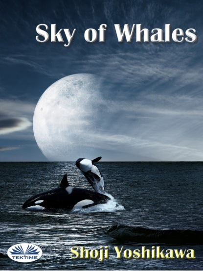 Shoji Yoshikawa Sky Of Whales