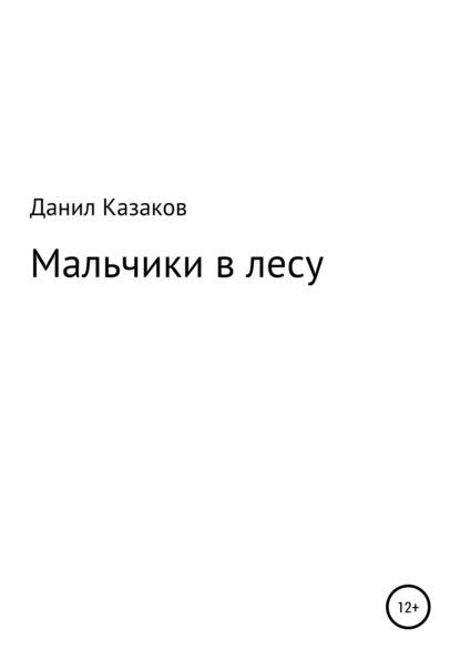 Данил Васильевич Казаков Мальчики заблудились