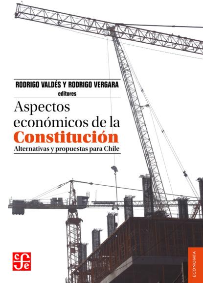 Rodrigo Valdés Aspectos económicos de la Constitución mario fernando garcés durán estallido social y una nueva constitución para chile
