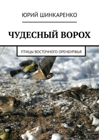 ЧУДЕСНЫЙ ВОРОХ. Птицы Восточного Оренбуржья