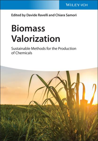Группа авторов Biomass Valorization недорого