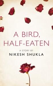 A bird, half-eaten: A Story from the collection, I Am Heathcliff