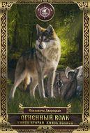 Огненный волк. Книга 2: Князь волков
