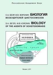 Биология возбудителей шистосомозов