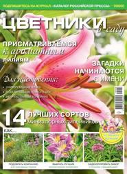 Цветники в Саду 08-2018