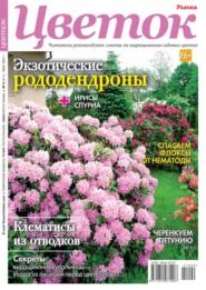 Цветок 09-2021