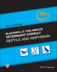 Blackwell\'s Five-Minute Veterinary Consult: Reptile and Amphibian
