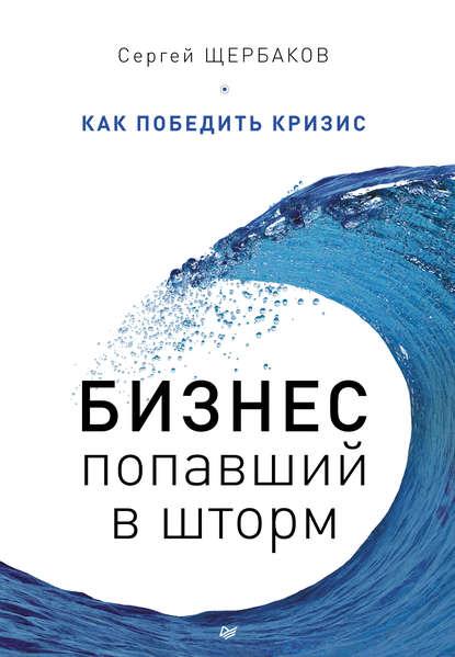 Обложка «Бизнес, попавший в шторм. Как победить кризис»