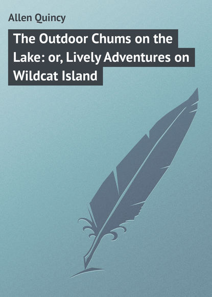 Обложка «The Outdoor Chums on the Lake: or, Lively Adventures on Wildcat Island»