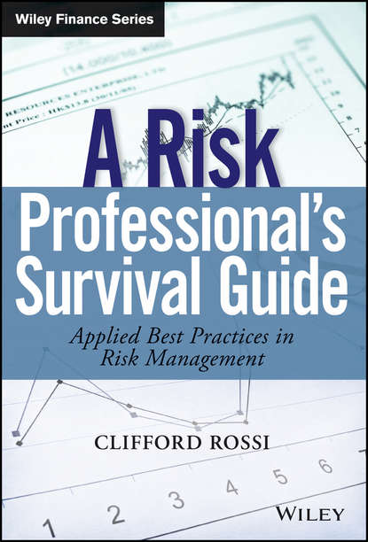 Обложка «A Risk Professional's Survival Guide»