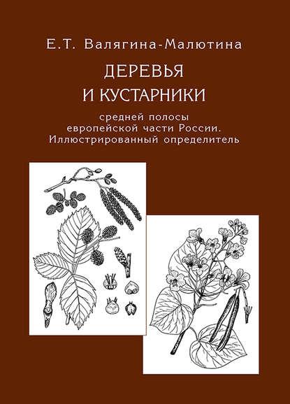 Обложка «Деревья и кустарники средней полосы европейской части России. Иллюстрированный определитель»