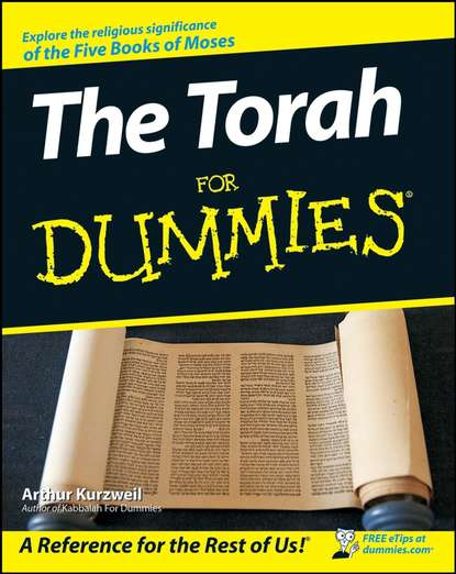 Обложка «The Torah For Dummies»