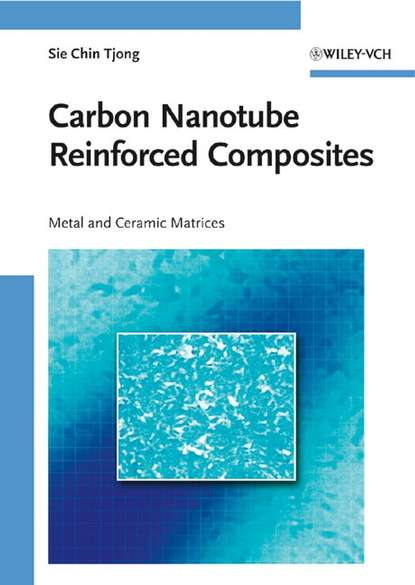 Обложка «Carbon Nanotube Reinforced Composites. Metal and Ceramic Matrices»