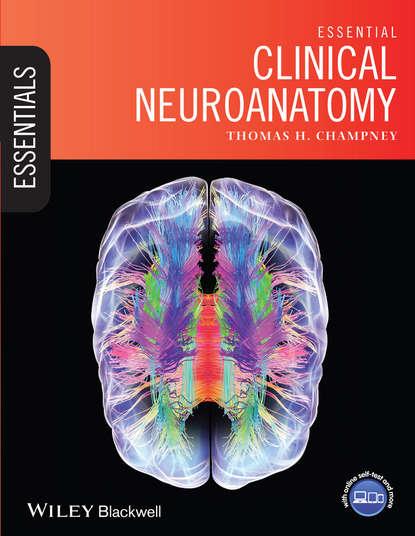 Обложка «Essential Clinical Neuroanatomy»