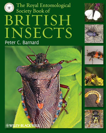 Обложка «The Royal Entomological Society Book of British Insects»