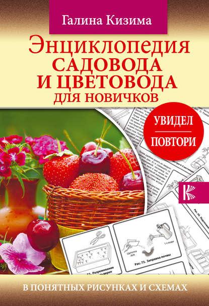 Обложка «Энциклопедия садовода и цветовода для новичков в понятных рисунках и схемах. Увидел – повтори»