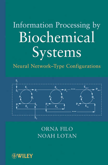 Обложка «Information Processing by Biochemical Systems. Neural Network-Type Configurations»