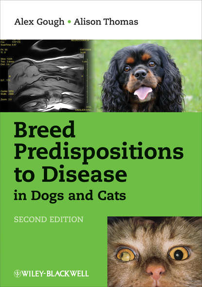 Обложка «Breed Predispositions to Disease in Dogs and Cats»