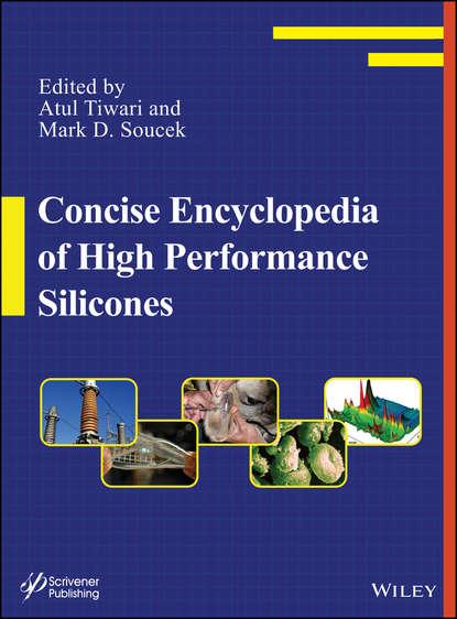 Обложка «Concise Encyclopedia of High Performance Silicones»